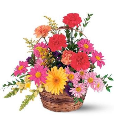 Vibrant Basket Arrangement<br>TF217-2