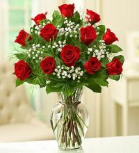 Classic Dozen Long-Stem Red Roses