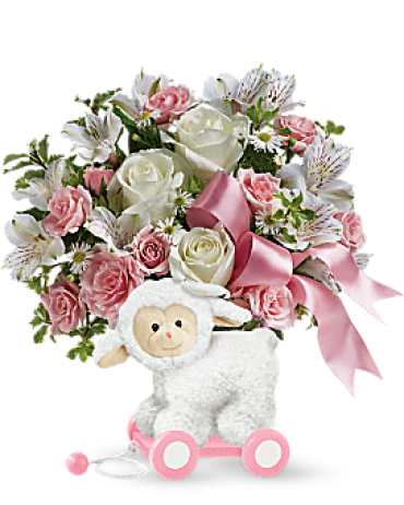Sweet Little Lamb - Baby Pink<br>TNB03-1A