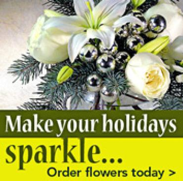 Make Sparkle Holidays