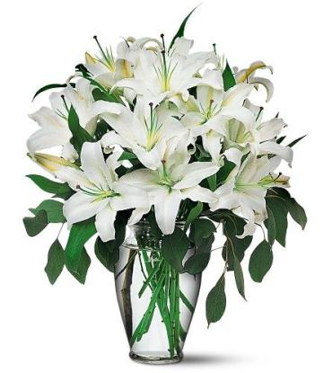 Perfect White Lilies<br>TF24-1