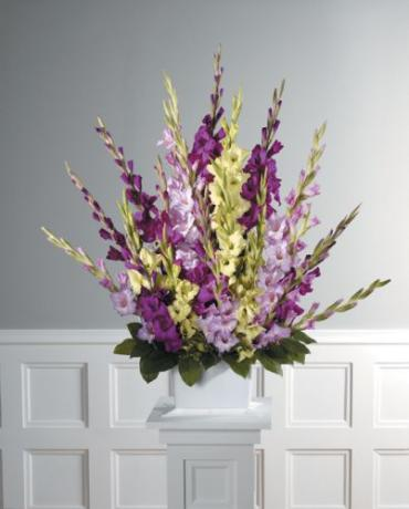 Mixed Gladiolus Arrangement<br>CTT 51-11