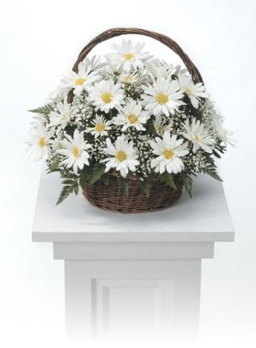 White Daisy Basket<br>CTT 4-21