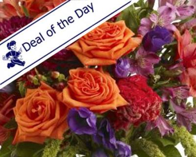 Bonnie Braes\' Deal of the Day