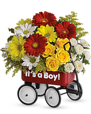 Baby\'s Wow Wagon - Boy<br> T35-1A