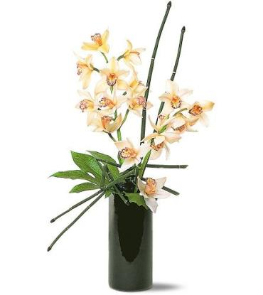 Artful Orchids<br>TF150-1