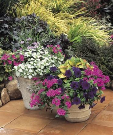 Outdoor Patio Planters