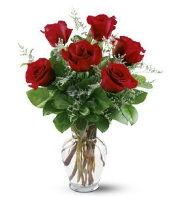 Half Dozen Long Stem Red Roses