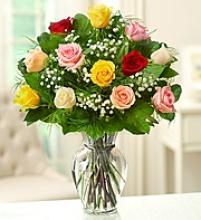 Dozen Multi-Colored Roses