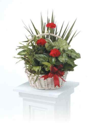 Basket Garden with Fresh Flowers<br>CTT 30-11