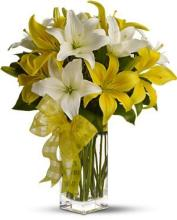 PICK-A-LILY BOUQUET<br>TFWEB523